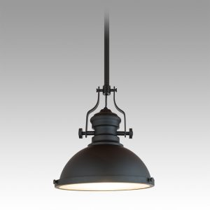 French Industrial Pendant 310